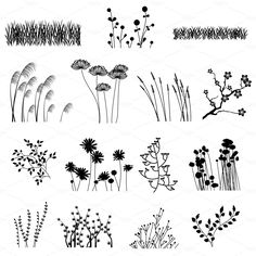 Flower Drawing Flower Silhouettes Clip Art Clipart Flower Clip Art Clipart - Personal and Commercial Use - Silhouette Photoshop, Grass Silhouette, Doodle Art, Doodle Drawings, Brosses Photoshop, Photoshop Brushes, Plant Drawing, Drawing Flowers, Grass Drawing