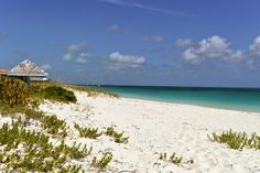 The dunes of Grace Bay, Turks & Caicos - Goboogo Travel Photography: The Dunes, Turks And Caicos, Small Island, Cold Day, Caribbean, Travel Photography, Beach, Places, Water