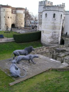 Great photo of the Tower of London