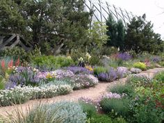 Denver Botanic Gardens, Denver, Co.: The Water Smart Garden includes plants from semi-arid climates of the West and other areas of the world that have a similar climate to Colorado's, including the Mediterranean, South Africa, South America and Central Asia.