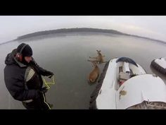 GoPro: Hovercraft Deer Rescue awe, the poor things. Glad this father and son helped out.