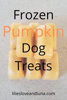 Easy two-ingredient and three-ingredient frozen pumpkin dog treats. Pumpkin Dog Treats, Diy Dog Treats, Homemade Dog Treats, Dog Treat Recipes, Healthy Dog Treats, Dog Food Recipes, Fall Treats, Dog Ice Cream, Frozen Dog Treats