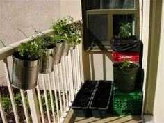 DIY Balcony Railing Planter: Decorative Planter Ideas - Unique Balcony & Garden Decoration and Easy DIY Ideas Balcony Railing Planters, Porch And Balcony, Patio Planters, Balcony Decoration, Balcony Garden, Herb Garden, Container Gardening, Urban Gardening, Vegetable Gardening