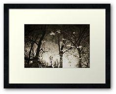 """Reflections III"" by Nikos Kantarakias - photography Centerpiece Decorations, Custom Boxes, Framed Art Prints, Modern Farmhouse, Reflection, Rustic, Glass, Photography, Country Primitive"