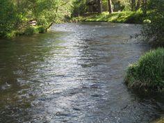 Metolius River, OR