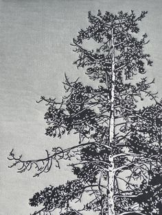 Arboreal No. I (State III) Linocut Print 18x24 Slate Gray and Charcoal Redwood Tree on Etsy, $185.00