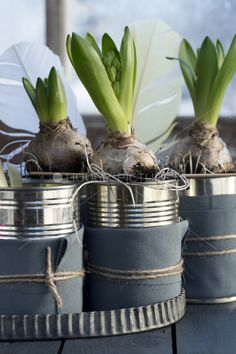 . love the reused cans with fabric wraped and twine tied