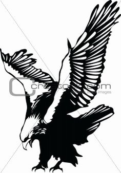 Flying Eagle Silhouette Clipart - Free Clipart