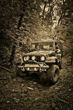 Jeep TJ in the woods.