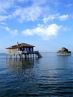 Bassin d'Arcachon, l'Ile aux oiseaux, France South Of France, Paris France, Bordeaux, Promenade En Bateau, Places To Travel, Places To Visit, Beautiful World, Beautiful Places, Cap Ferret