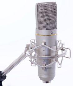 Isk Starlight condenser microphone.