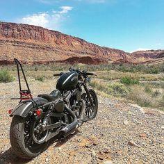 Pointed Traveler Handmade Sissy Bar Fits Harley Sportsters
