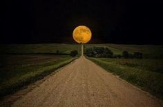 Super moon over a field