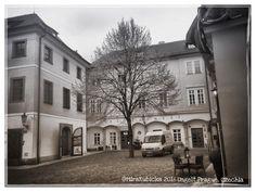 #praha #ungelt #prague #praga #prag #czech #czechia #czechrepublic #cesko #ceskarepublika #oldtown #history #heritage #photography #photos #photo #myphoto #travel #2016 #tree