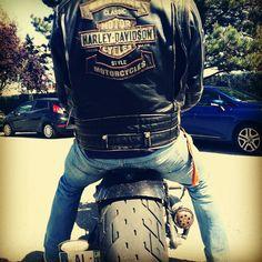 3ece295f05 #bum #harleydavidson #choppers #hd Choppers, Harley Davidson, Biker,  Workshop