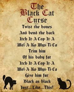 Here are the Halloween Quotes Cat. This article about Halloween Quotes Cat was posted under the Halloween Quotes category by our team at October 2019 at pm. Hope you enjoy it and don& forget to share this post. Halloween Spells, Halloween Poems, Retro Halloween, Couple Halloween, Holidays Halloween, Spooky Halloween, Diy Halloween Spell Book, Hocus Pocus Halloween Decor, Halloween Party