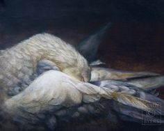 GOODNIGHT GRACE: I had to paint her because there simply are no words that convey her beauty.  11 x 14 Pastel Painting by Sandy Byers Pastel (bird, swan)