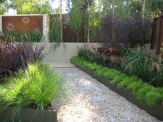 1000 images about native gardens on pinterest - Front garden ideas western australia ...