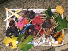 material from tools and Mother nature to create their own art