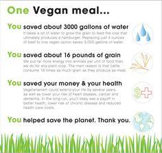 Una riduzione dell'impatto ambientale è possibile solo attraverso un drastico cambio dell'alimentazione globale, scegliendo di non usare prodotti animali (UNEP, 2010)
