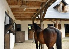 Kulbaka, Wetlina - konie i noclegi