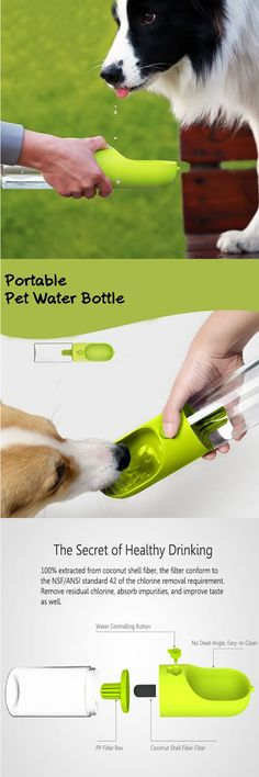 How to keep your pets away from thirsty ?