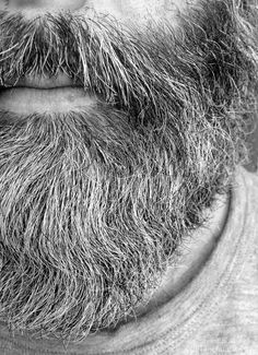 Beards. Men. Going Gray. Photography.