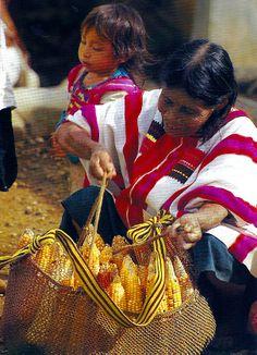 Woman from Chiapas, México http://hostmyniche.com/learnspanish/