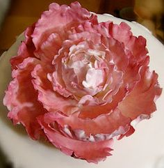 The Cakerator: Gum Paste Peony Tutorial: Part 2