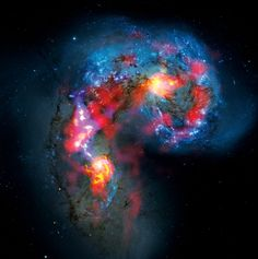 A view of the colliding Antennae galaxies, 70 million light-years from Earth, combines visible light (blue) captured by the Hubble Space Telescope with never before seen swirls of interstellar gas revealed in a test image from the ALMA telescope. COLORIZED COMPOSITE IMAGE: ALMA (ESO/NAOJ/NRAO) AND NASA/ESA HUBBLE TELESCOPE. SOURCE: ESO