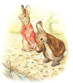 Beatrix Potter Illustrations, Book Illustrations, Beatrice Potter, Peter Rabbit And Friends, Benjamin Bunny, Graphic Illustration, Woodland Illustration, Botanical Drawings, Flower Fairies