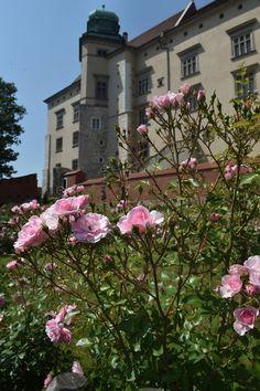 Królewskie ogrody na nowej trasie zwiedzania Wawelu-Poland