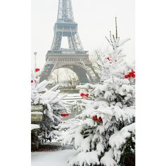 paris - Page 43 ❤ liked on Polyvore featuring paris