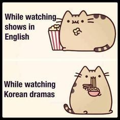 I knew Pusheen had to be a K-Drama fan...