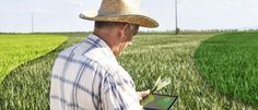 InfoNavWeb                       Informação, Notícias,Videos, Diversão, Games e Tecnologia.  : Produtores rurais agora trabalham com aplicativos ...