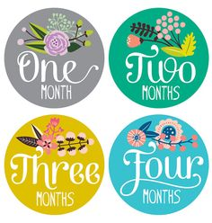 Floral Baby Stickers - Baby Girl Milestone Stickers - Floral Hand Lettering - Bodysuit Sticker - Set of 12 Fotos Baby Shower, Baby Shower Gifts, Oysho Lingerie, Baby Monthly Milestones, Monthly Baby, Baby Monat Für Monat, Baby Month Stickers, Baby List, Babies First Year