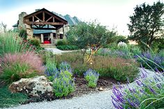 """Beautiful Natural Landscape -""""Lakeside Garden"""" - One Specialty Dallas"""