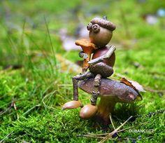 Tak už zase rostou! To mi říkal tenhle dubánek dnes v lese, když jsem tam byl s nejmladší na procházce... ~ gesehen bei: Dubánci - https://www.facebook.com/dubanci/