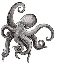 Octopus Drawing, Octopus Tattoo Design, Octopus Tattoos, Octopus Art, Tattoo Sketches, Tattoo Drawings, Squid Tattoo, Watch Tattoos, Great Tattoos