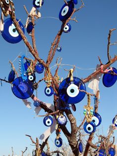 All sizes | Evil Eye Tree | Flickr - Photo Sharing!