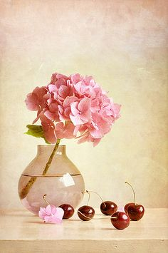 Hydrangea and cherries by Colleen Farrell Hortensia Rose, Hydrangea Flower, Hydrangeas, Deco Nature, Still Life Flowers, Still Life Art, Arte Floral, Still Life Photography, Art Pictures