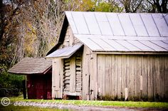 rustic, beautiful shot from serendipity is sweet.
