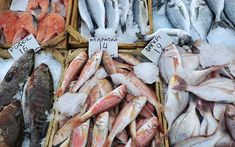 A handy, alphabetized guide with photos of the most common fish and other seafood items found on Greek menus with their English, Greek and scientific names. Greek Recipes, Fish Recipes, Seafood Recipes, Seafood Meals, Atlantic Cod, Greek Fish, Greek Menu, Red Mullet, Yellowfin Tuna