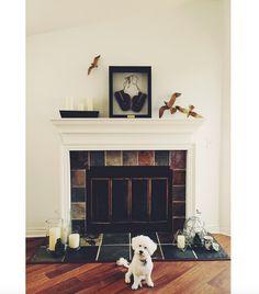 Gina Rodriguez Home Instagram