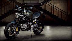 Ducati Monster 1100 EVO - Diesel Edition... Italian Style