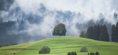 #Allgäu. One of the most #beautiful areas in #Germany. Even bad #weather can't change the #attractivity, it rather supports it. Germany, Rain, Weather, Change, Mountains, Nature, Photography, Travel, Painting