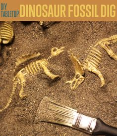 DIY Tabletop Dinosaur Dig Game DIY Projects Craft Ideas & How To's for Home Decor with Videos Create a fossil game that your kids will enjoy with this DIY dino dig game. We're sure that they'll spend hours of fun with this engaging game at your table top. Dinosaur Party Games, Dinosaur Dig, Dinosaur Activities, Dinosaur Crafts, Dinosaur Fossils, Dinosaur Birthday Party, Birthday Party Games, Dinosaur Projects, Kid Crafts