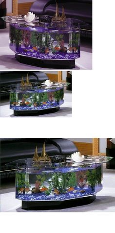 36gl Rectangle Coffee Table Aquarium Completely Fish Ready With Hidden Filter And Led Lights Misc Pinterest D Coffee Table Aquarium And Coffee