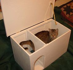cat house for the winter and for feral cats katzen. Black Bedroom Furniture Sets. Home Design Ideas