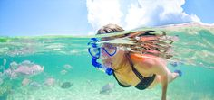 The Reef Resort offers all inclusive Grand Cayman honeymoon, vacation and wedding packages. Make your Reef Resort all inclusive Grand Cayman vacation planning easy with Honeymoons, Inc.